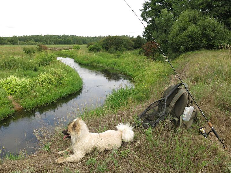 Рыбалка на голавлевой речке_1.jpg