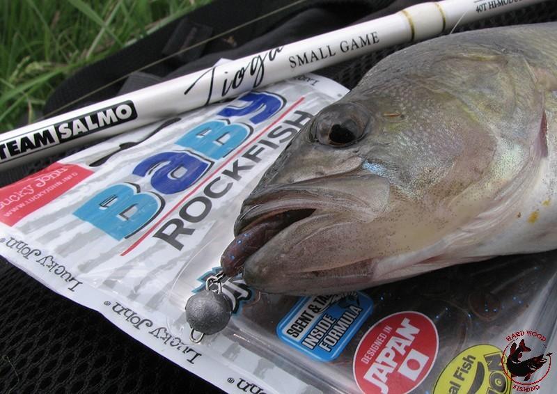Lucky John Baby Rockfish_3.jpg