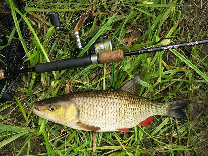 Рыбалка на голавлевой речке_5.jpg